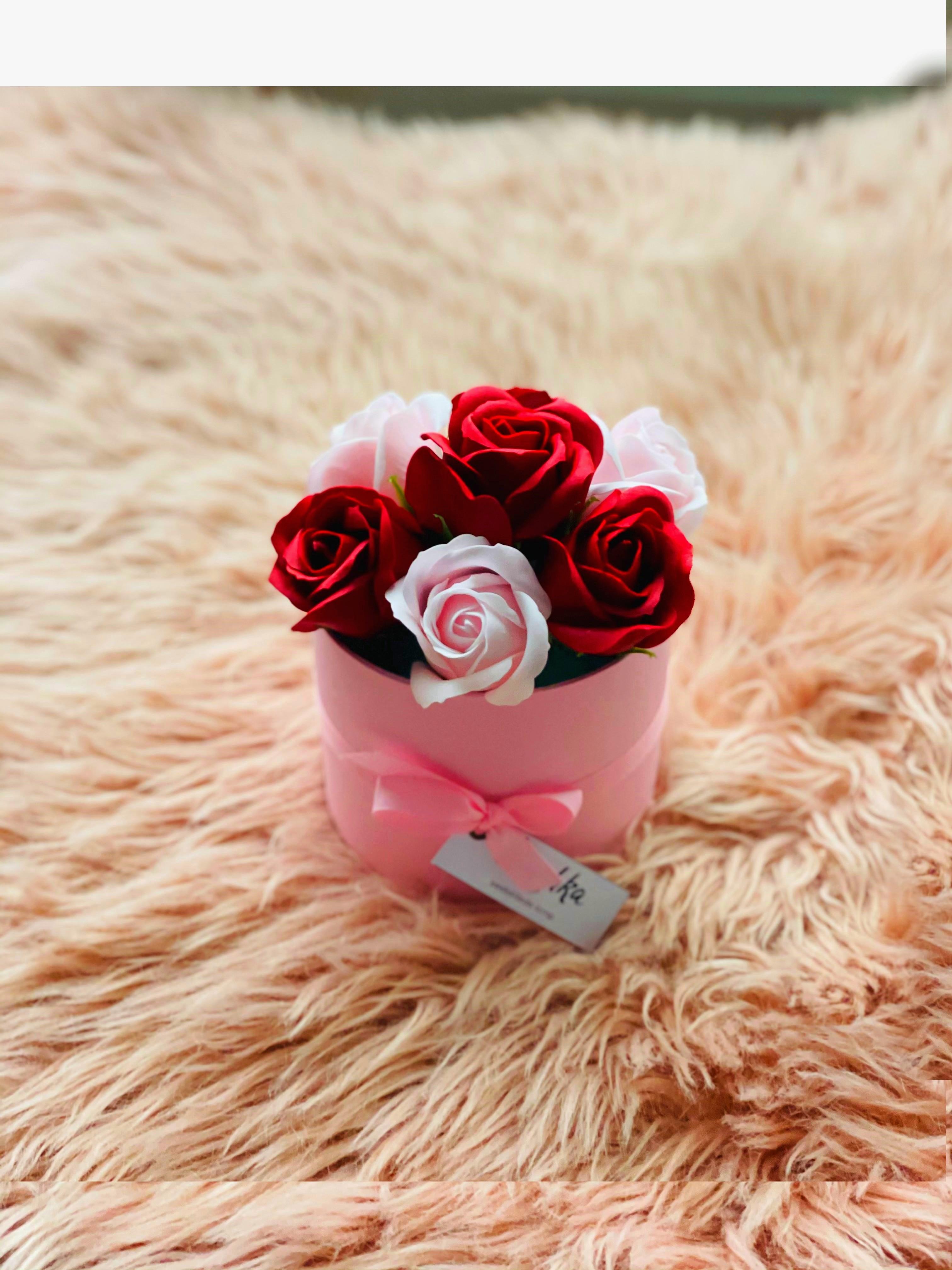 Seebiroosid punane-roosa